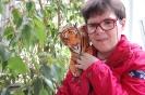 Nałęczów, wnętrze Palmiarni i Pijalni Wód, Pani Agnieszka dumnie trzyma maskotkę tygrysa na ramieniu
